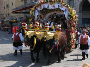 Feast of Sant Efisio - Traccas